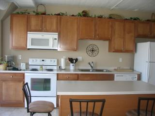 Waterfront Condo - Downtown Sandusky - Sandusky vacation rentals