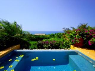 Fabulous 4 Bedroom Villa in Punta MIta - Image 1 - Punta de Mita - rentals