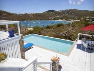 Lovely 4 Bedroom Vila in Cruz Bay - Cruz Bay vacation rentals
