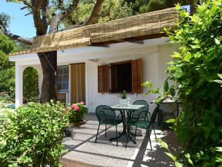 Bungalow in a a garden by the sea - Petrcane vacation rentals