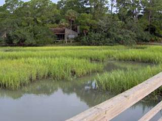 Peaceful/ relaxing/marshfront / golf cart - Fripp Island vacation rentals