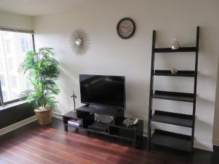 LUXURIOUS 1 BEDROOM CONDO IN CHICAGO - Chicago vacation rentals