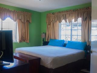 YB Kirk's  Apt  In the SUN -    Ocho Rios  jamaica - Saint Ann's Bay vacation rentals