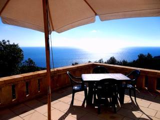 Monolocale con spettacolare terrazza vista mare - Marina di Novaglie vacation rentals