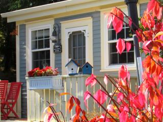 Blue House Cottage and Gardens on the Sea - Tors Cove vacation rentals