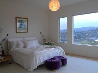 2 bedroom Condo with Internet Access in Belvedere - Belvedere vacation rentals
