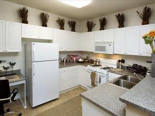 1 bedroom Condo with Internet Access in Pleasanton - Pleasanton vacation rentals