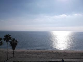 Corpus Christi Beachfront Condo 2202 - Corpus Christi vacation rentals