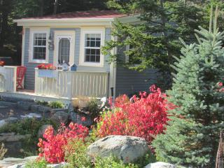 Hikers Paradise Blue House Cottage near St. John's - Tors Cove vacation rentals