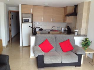 Nice Condo with Internet Access and Elevator Access - Pinoso vacation rentals