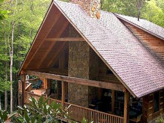 3 bedroom Cabin with Internet Access in Blowing Rock - Blowing Rock vacation rentals