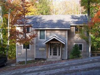 L`Hermitage - 257 Brookside Road - Canaan Valley vacation rentals