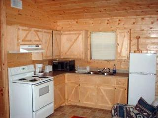 Perfect House with Long Term Rentals Allowed and Satellite Or Cable TV - Broken Bow vacation rentals