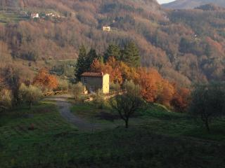Romantic 1 bedroom Castelvecchio Farmhouse Barn with Parking - Castelvecchio vacation rentals