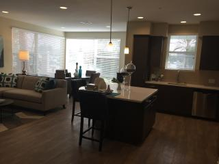 Delux 2B Apt in Irvine walking distance plaza - Irvine vacation rentals