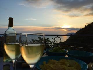 Nice Condo with Dishwasher and Iron - Manarola vacation rentals