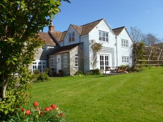 Large Bright Double Room in Historic Village House - Butleigh vacation rentals