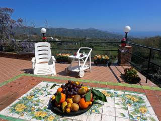 PALMENTO HOUSE - Traditional Wine Mill - Piedimonte Etneo vacation rentals