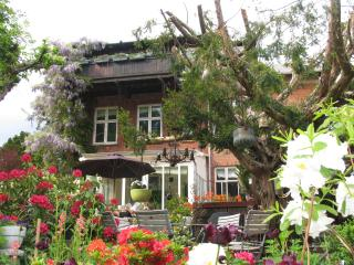 Charming apartment 15 min from City Center - Charlottenlund vacation rentals
