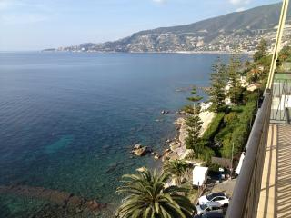 Nice Condo with Satellite Or Cable TV and Garage - Ospedaletti vacation rentals