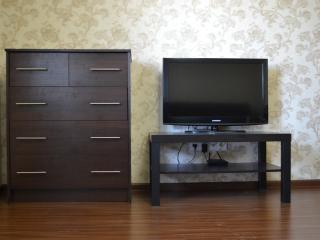 Lektika Апартаменты Ленина 98 - Barnaul vacation rentals