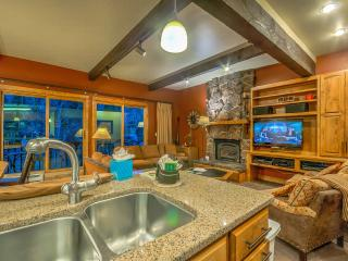 True Ski In/Out Townhome - Steamboat Springs vacation rentals