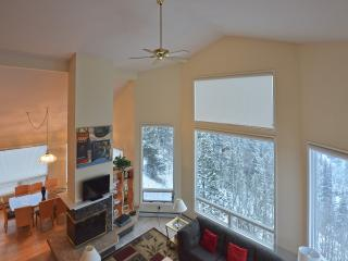Breathtaking Views:  Shuttle, Sleeps 18, Hot Tub - Breckenridge vacation rentals