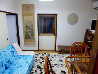 Nice House with Internet Access and A/C - Setagaya vacation rentals