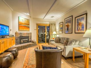 Great Unit,Better Value, Close to the Slopes - Steamboat Springs vacation rentals