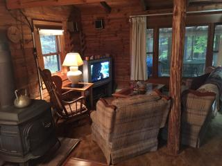 Cozy 3 bedroom House in Otego with Satellite Or Cable TV - Otego vacation rentals