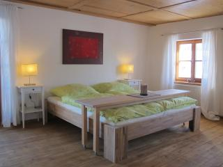 Schöne Ferienwohnung mit Bergblick in Pfronten - Pfronten vacation rentals