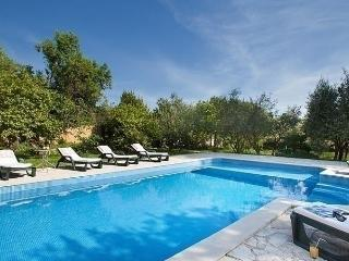 Nice 4 bedroom Divsici House with Internet Access - Divsici vacation rentals