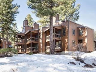 Free ski shuttle, hot tub and pool access, and more! - Truckee vacation rentals