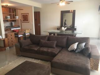 Gorgeous Condo with Private Outdoor Pool and A/C - Barueri vacation rentals