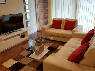 Vizion Luxury Short Stay Apartment - Milton Keynes vacation rentals