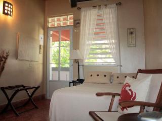 Experience real Puerto Rico, studio/kitchen Steam shower, best beach SJU airport - San Juan vacation rentals