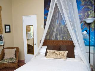 Romantic tropical studio perfect for 2, Ocean park beach, direct bus to El Morro - San Juan vacation rentals