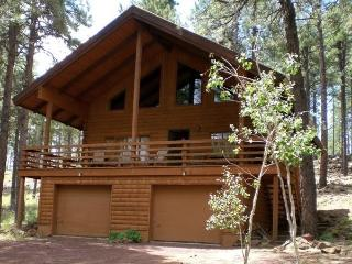 Cool Cabin in the tall pines - Flagstaff vacation rentals