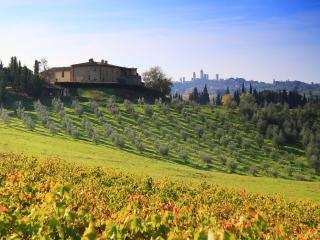 """MARGHERITA"", DOUBLE WITH TERRACE IN SAN GIMIGNANO - San Gimignano vacation rentals"