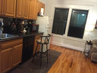Private Room in the Hub of Downtown - Boston vacation rentals