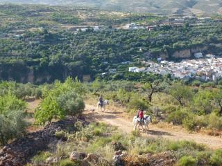 Traditional Spanish mountain village retreat - Albunuelas vacation rentals