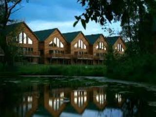 GRAND BEAR RESORT LUXURY CABIN - 40% OFF! - Utica vacation rentals