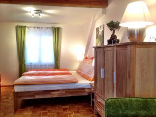 Apartment Anastasia - 10 Minuten von Graz - Graz vacation rentals