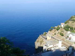 Apartment withTerrace on the sea - Riomaggiore vacation rentals