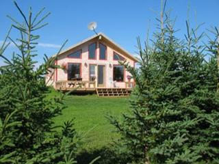 Nice Cottage with Grill and Fireplace - Saint Peters Bay vacation rentals
