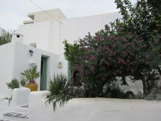 Phedras Lodge traditional village house in Psinthos village - 7 km from beach - Psinthos vacation rentals