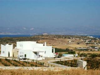 Large multi-family home with pool - Naoussa vacation rentals
