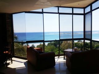 Amazing Ocean Views  / 3 minutes walking to Sámara - Playa Samara vacation rentals