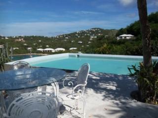 Amazing 6 Bedroom Villa in Cruz Bay - Cruz Bay vacation rentals