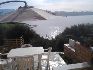 chambre/terrasse sur le golfe de Saint-Florent - Patrimonio vacation rentals